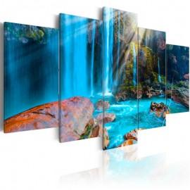 Quadro - Treasures of Nature