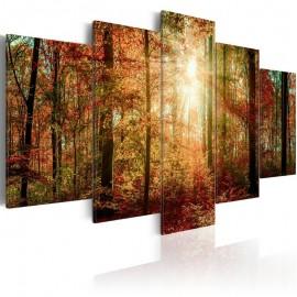Quadro - Autumn Wilderness