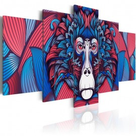 Quadro - Magnetism of the Look