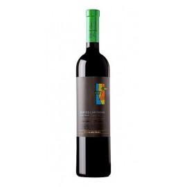 Vino Viñas del Vero Serie Limitada Pinot Noir - Tinto 75 Cl.