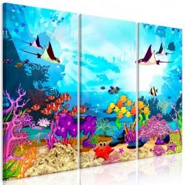 Quadro - Underwater Fun (3 Parts)