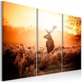 Quadro - Deer in the Sun I