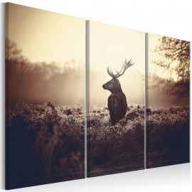 Quadro - Lurking Deer I