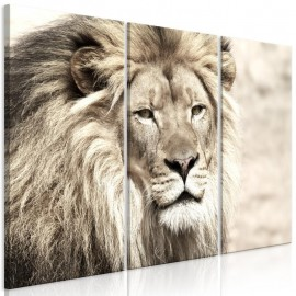 Quadro - The King of Beasts (3 Parts) Beige