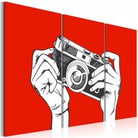 Quadro - A photographer