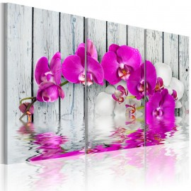 Quadro - harmony: orchid - Triptych