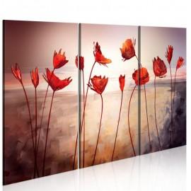 Quadro - Bright red poppies