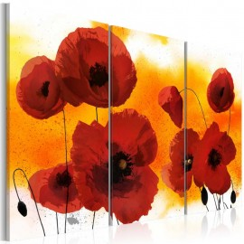 Quadro - Sunny afternoon and poppies