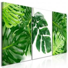 Quadro - Palm Leaves (3 Parts)