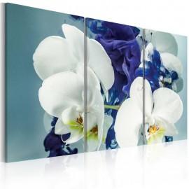 Quadro - Orquídeas quiméricas