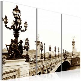 Cuadro - Un paseo romántico en París