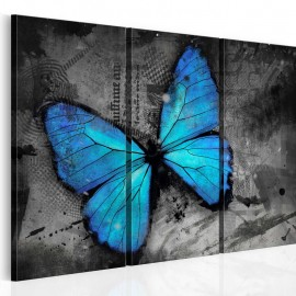 Quadro - The study of butterfly - triptych