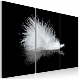 Cuadro - Una pluma pequeña