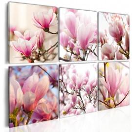 Quadro - Southern magnolias