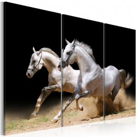 Quadro - Horses- power and velocity