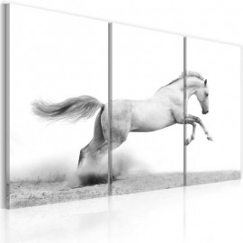 Quadro - A galloping horse