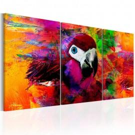 Cuadro - Jungle of Colours