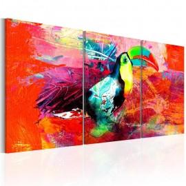 Cuadro - Colourful Toucan