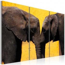 Cuadro - Beso de elefantes