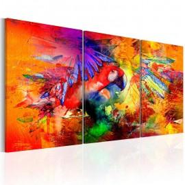 Cuadro - Colourful Parrot