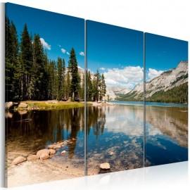 Cuadro - Montañas, árboles y lago puro