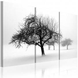 Quadro - Trees submerged in white
