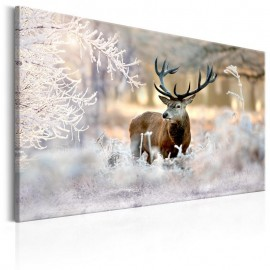 Quadro - Deer in the Cold