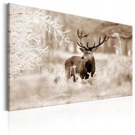 Quadro - Deer in Sepia