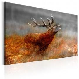 Cuadro - Roaring Deer