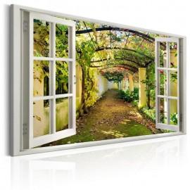 Quadro - Window: View on Pergola