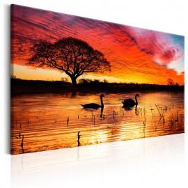 Quadro - Swan Lake
