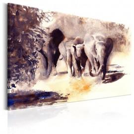 Cuadro - Watercolour Elephants