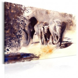 Quadro - Watercolour Elephants
