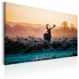 Quadro - Frosted Field