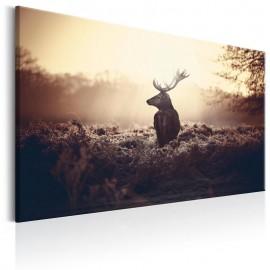 Cuadro - Lurking Deer