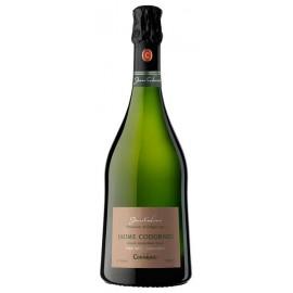 Jaume Codorniu Gran Reserva Brut 2008 Cava 75 Cl. (3 botellas)