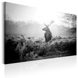 Cuadro - Black and White Deer