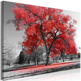 Quadro - Autumn in the Park (1 Part) Wide Red