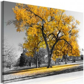Cuadro - Autumn in the Park (1 Part) Wide Gold
