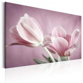Cuadro - Romantic Tulips