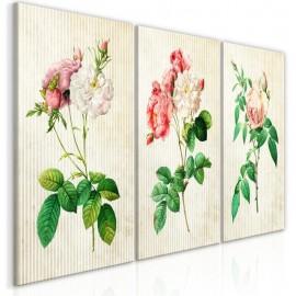 Cuadro - Floral Trio (Collection)
