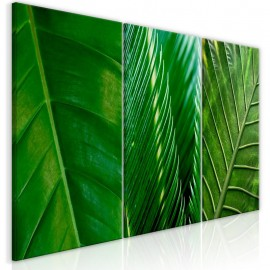 Quadro - Leaves (Collection)