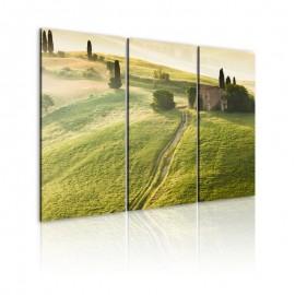Cuadro - Bajo el sol de la Toscana