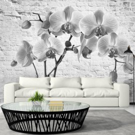 Fotomural - Orchid in Shades of Gray