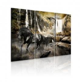 Cuadro - Caballo negro y cascada rocosa