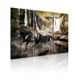 Quadro - Black horse and rocky waterfall