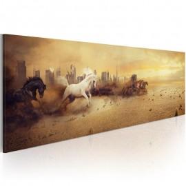 Quadro - City of stallions