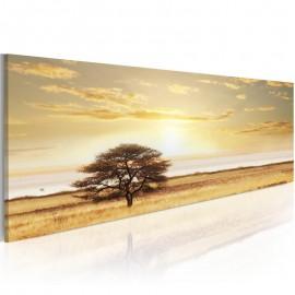 Cuadro - Lonely tree on savannah