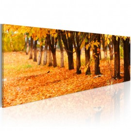 Cuadro - Golden leaves