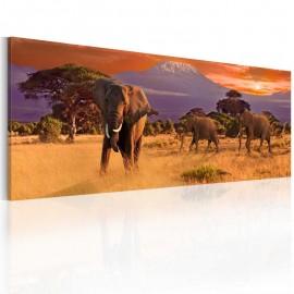 Cuadro - Marcha de los elefantes africanos
